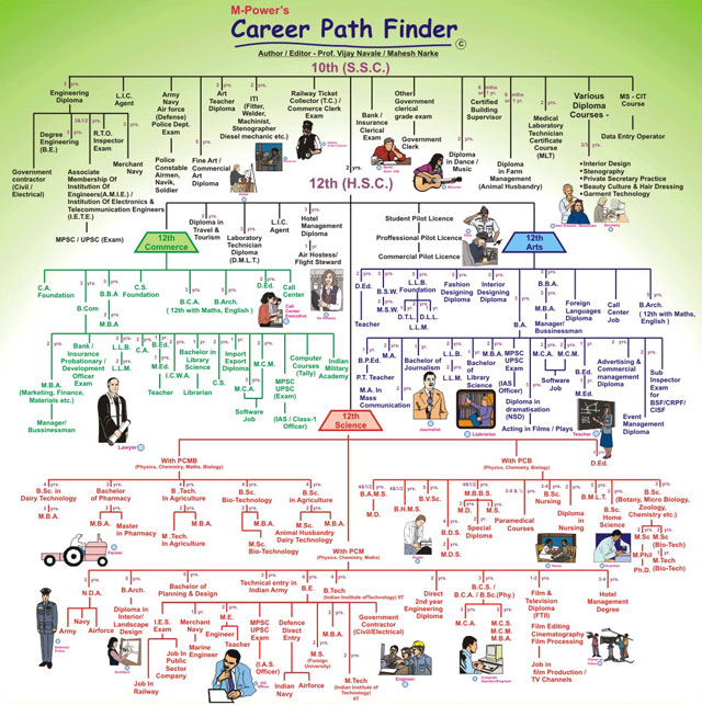 career path finder chart